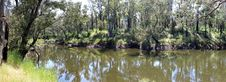 Free Panorama Of Blackwood River West Australia Stock Photo - 27648790