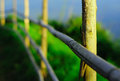 Free Wood Fence Royalty Free Stock Photography - 27658207