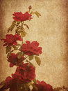 Free Old Paper With Roses Royalty Free Stock Images - 27658599