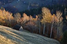 Free Autumn Village Landscape In Romania Royalty Free Stock Images - 27661189