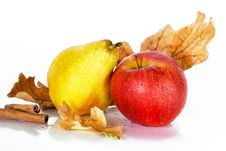 Free Autumn Fruits With Oak Leaves And Cinnamon Stock Images - 27661934