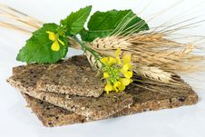 Whole Wheat Bread With Ears Of Wheat And Flower Royalty Free Stock Photography