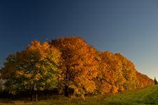 Free Autumn Landscape Stock Images - 27663544