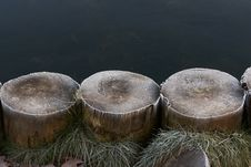 Frost On Piles Near Lake Royalty Free Stock Photos