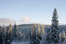 Free Winter Landscape Royalty Free Stock Images - 27681779