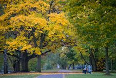 Free Walk In The Park Royalty Free Stock Image - 27683296