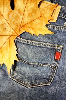 Free Blue Jeans Stock Image - 27695951