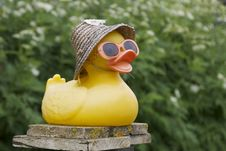 Free Rubber Duck Royalty Free Stock Images - 27698119