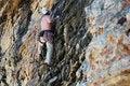 Free Rock Climber / Climbing Stock Photos - 2774763