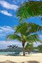 Free Tropic View Stock Photo - 2777730