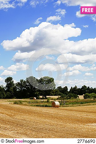 Free Straw Harvest Stock Photo - 2776690