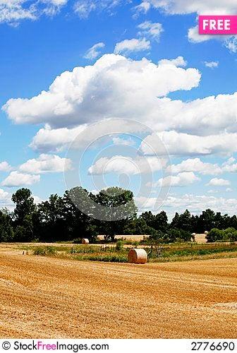 Free Straw Harvest Stock Photo - 2776690