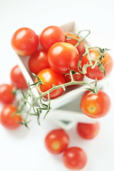 Free Fresh Tomatoes In Square Bowl Royalty Free Stock Photos - 2771168