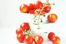 Free Fresh Tomatoes In Square Bowl Stock Image - 2771221