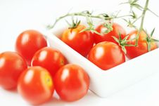 Free Fresh Tomatoes In Square Bowl Royalty Free Stock Images - 2771269
