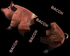 Free Pig And Bacon 11 Stock Photo - 2773770