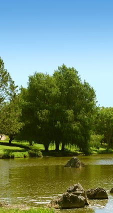 Free Summer Trees On Lake Royalty Free Stock Photography - 2774227
