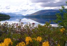 Free Loch Eil Stock Images - 2775904