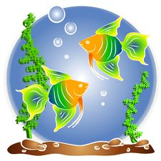 Free Tropical Fish Aquarium Clipart Royalty Free Stock Photos - 2776088