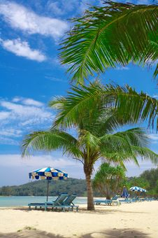 Tropic View Stock Photo
