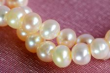 Pink Pearls Closed-up. Royalty Free Stock Images