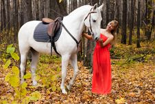 Free Young Woman Taking Care Of Her Horse Royalty Free Stock Photography - 27703857
