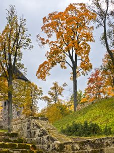 Free Ancient Castle And Autumnal Park Stock Images - 27707054