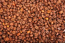 Free Coffe And Beans Stock Image - 27712811