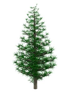 Free 3D Christmas Tree Royalty Free Stock Photography - 27720437