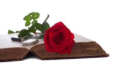 Open Book With Rose And Magnifying Glass Royalty Free Stock Photo