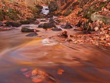 Free Orange Looking Stream In The Fall Royalty Free Stock Photos - 27727888