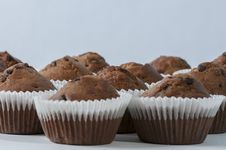 Chocolate Chip Muffins Royalty Free Stock Photo