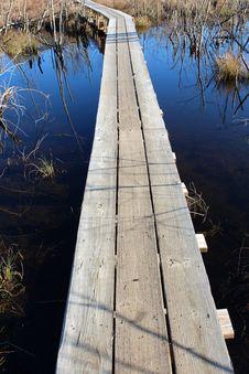 Free Wood Walkway Built Over Marsh Water Royalty Free Stock Photo - 27736535
