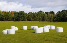 Free Field With Straw Bales Royalty Free Stock Photos - 27742848