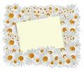 Free Daisy Greeting Card Royalty Free Stock Photos - 27755588