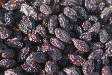 Free Dried And Smoked Plums Royalty Free Stock Photography - 27754867