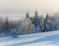 Free Winter Royalty Free Stock Images - 27765149