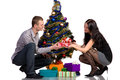 Free Men And Women Decorates The Christmas Tree Royalty Free Stock Photography - 27768737