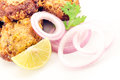 Free Chicken Or Potato Cutlet Stock Photography - 27771462