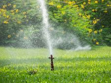 Free Sprinkler Stock Photography - 27779462