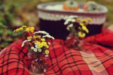 Free Autumn Bouquet Royalty Free Stock Photo - 27781375