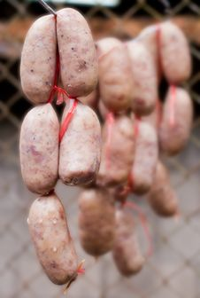 Free Sausage Northeastern Style Stock Photography - 27782482