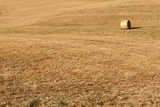 Free Background With Field Stock Images - 27785494