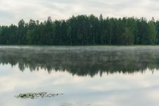 Free Reflection Of Forest In A Lake Stock Photography - 27786092