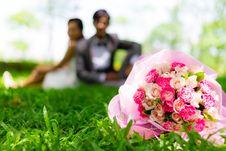 Free Wedding Couple Royalty Free Stock Images - 27793089