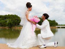 Free Wedding Couple Stock Photos - 27793363