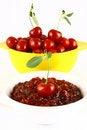 Free Jam Cherry Stock Images - 2787304