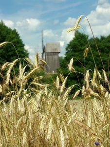 Free Field Of Wheat Stock Image - 2783601