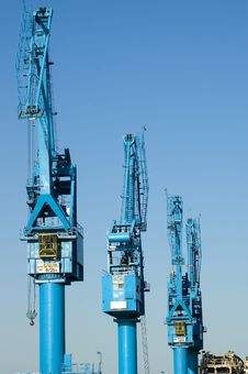 Three Crane Royalty Free Stock Photo