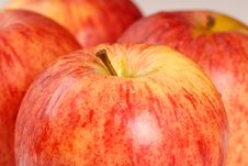 Free Four Gala Apples Closeup Stock Photos - 2787603